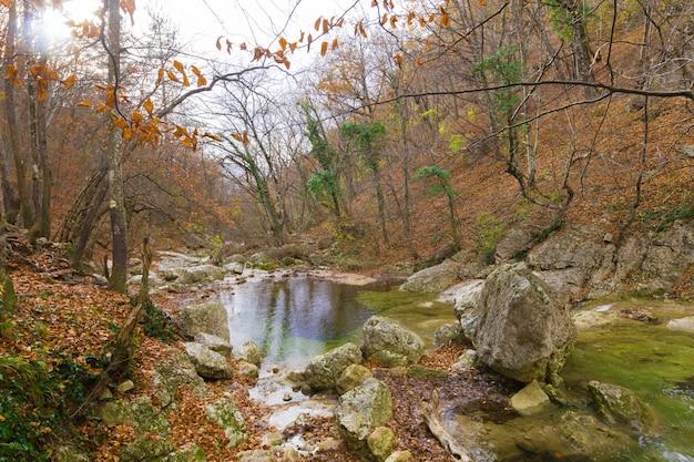 Río en el fondo de las montañas