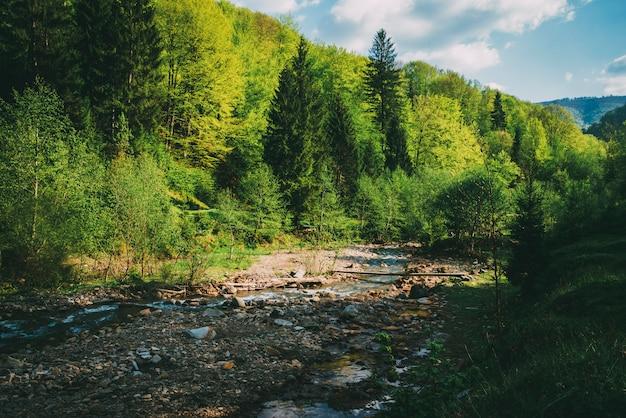 Río de montaña agua de manantial piedras y árboles