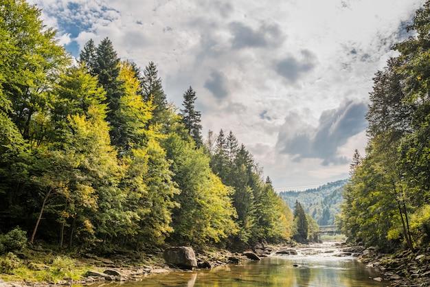 Río de montaña de los cárpatos