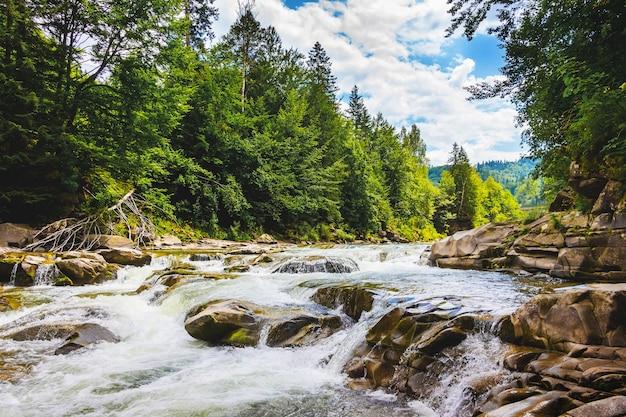 Río de montaña con rápidos arroyos de agua, árboles en la orilla de un río de montaña