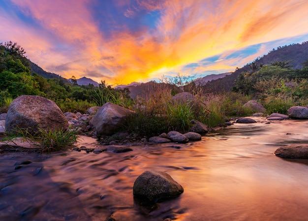 Río piedra y árbol con cielo y nube colorida, piedra río y hoja de árbol en bosque