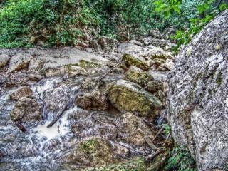 Río en primavera, la ecología