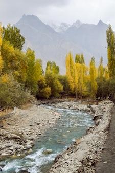 Río que fluye a través del bosque en otoño