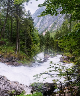 Río rápido en el bosque