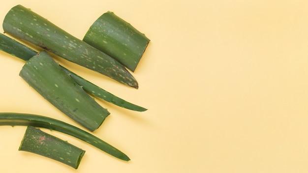 Rodajas frescas verdes de aloe vera sobre fondo amarillo