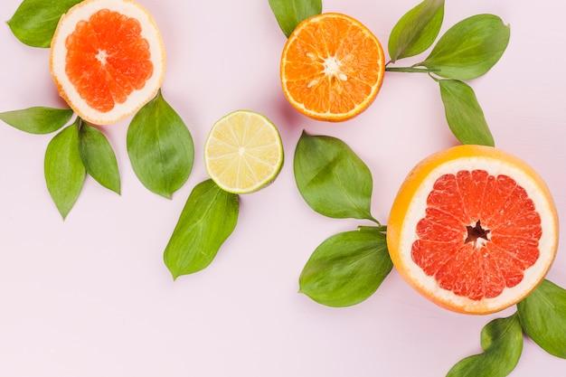 Rodajas de frutas exóticas frescas y follaje verde.