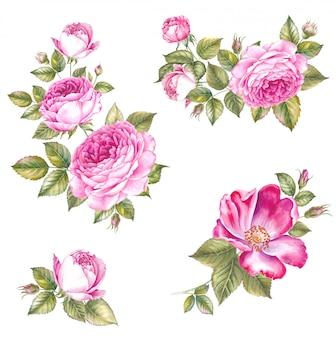 Románticas flores vintage.