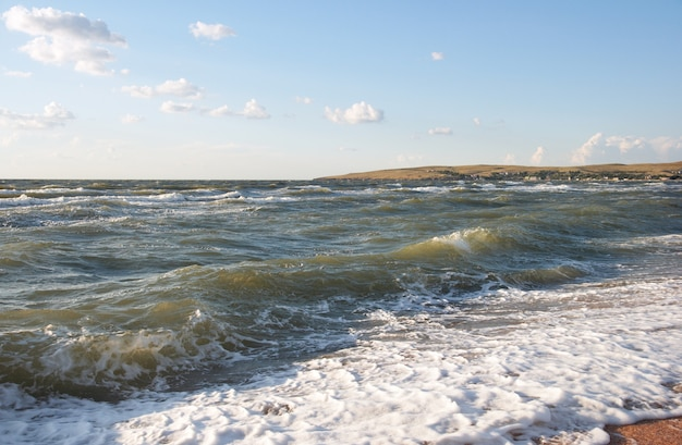 Rompimiento de olas de surf de mar en la costa