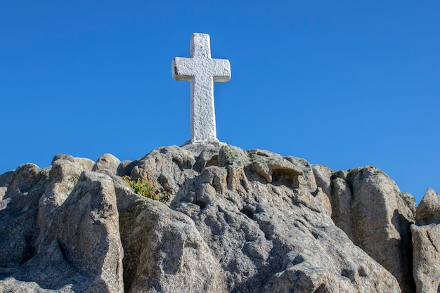 Roncudo cruza en la colina