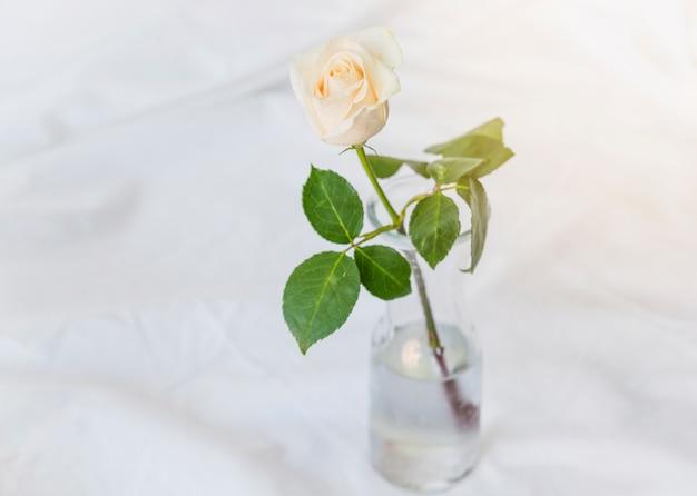 Rosa amarilla que se coloca en el florero de cristal en la tabla