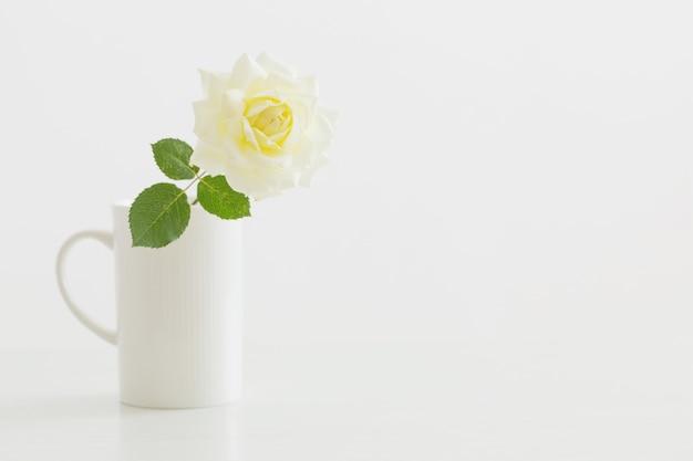Rosa amarilla en taza blanca sobre fondo blanco.