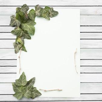 Rosa blanca y morada y hoja verde sobre fondo de madera