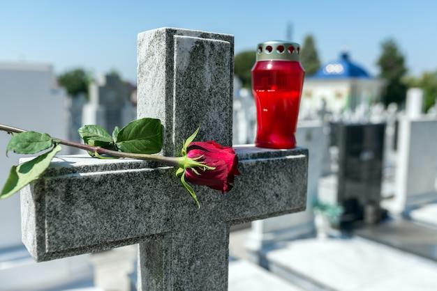 Rosa en un cementerio con lápida.
