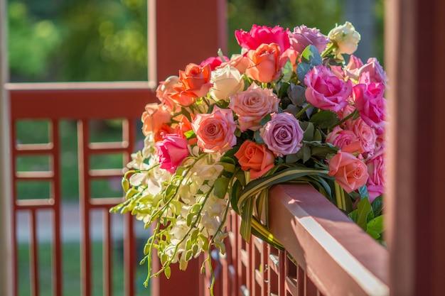 Rosa y luz cálida en jardín