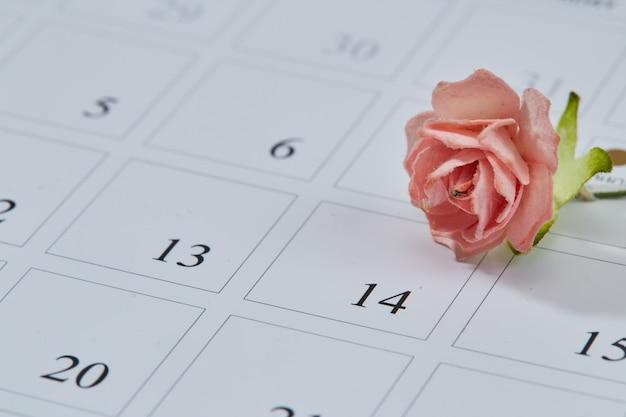 Rosa de papel en la página del calendario 14 de febrero