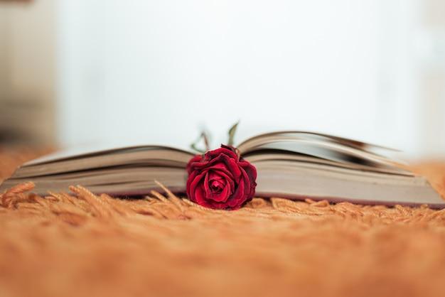 Rosa roja dentro de un libro abierto