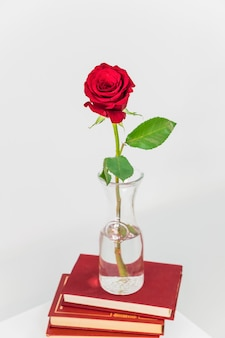 Rosa roja fresca en florero en el montón de libros