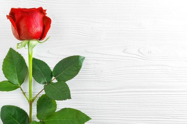Una rosa roja sobre fondo blanco de madera.
