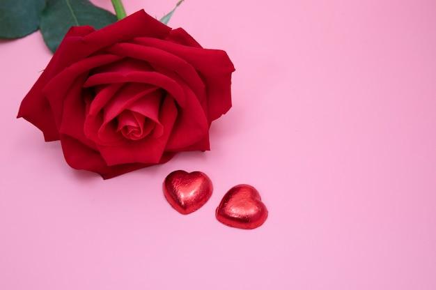 Una rosa roja sobre fondo rosa