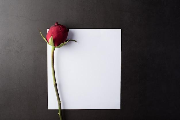 Rosa roja con tarjeta blanca