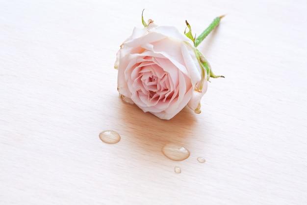 Rosa rosa y gotas de agua sobre un fondo de madera
