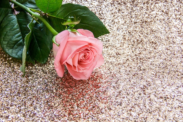Rosa rosa en un oro