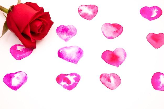 Una rosa sobre fondo de corazones de acuarela