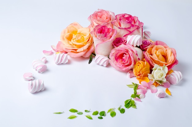 Rosas aisladas en blanco.