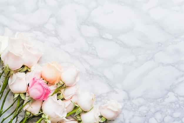 Rosas decorativas de colores sobre un fondo