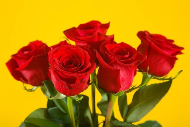 Rosas escarlata en amarillo