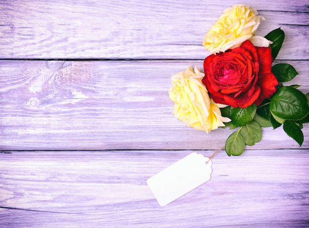Rosas florecientes y una etiqueta de papel en blanco