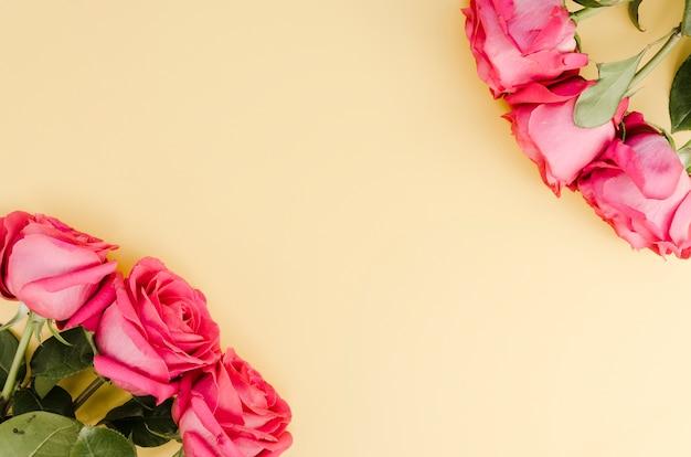 Rosas frescas románticas con espacio de copia