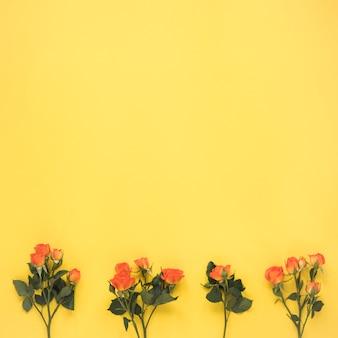 Rosas pequeñas en mesa amarilla.