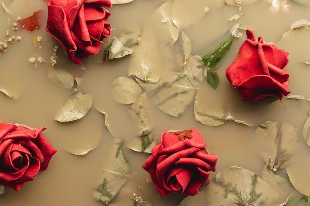 Rosas rojas en agua de color marrón