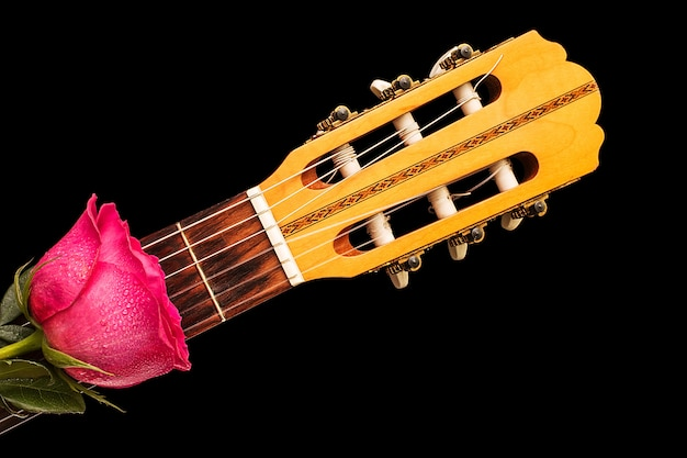 Rosas rojas en guitarra, amor, concepto de san valentín