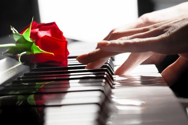 Rosas rojas en teclas de piano.