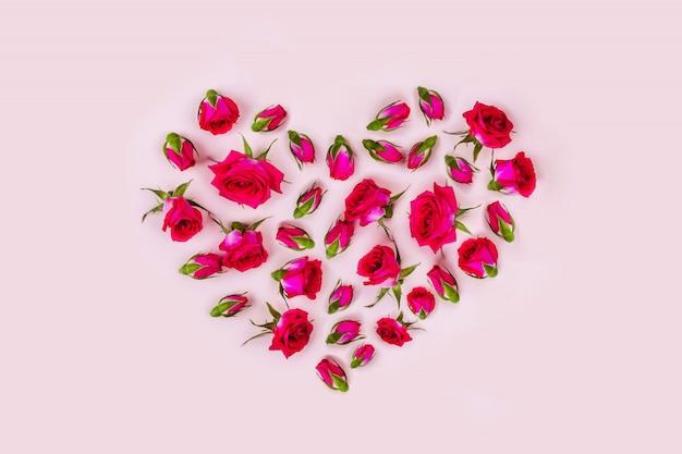 Rosas en rosa
