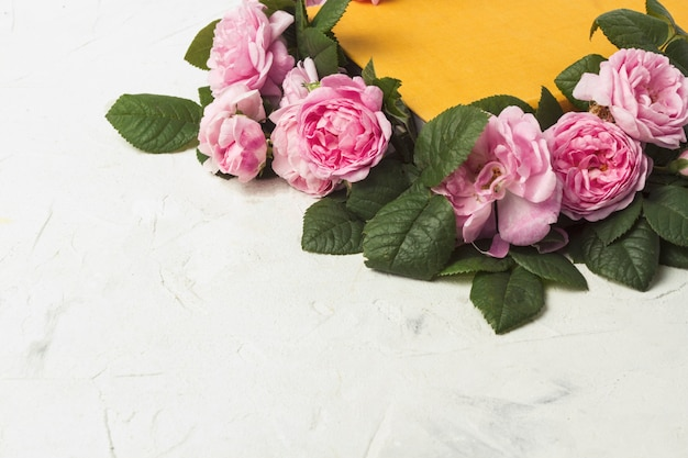 Rosas rosadas y un libro con una cubierta amarilla sobre una superficie de piedra clara