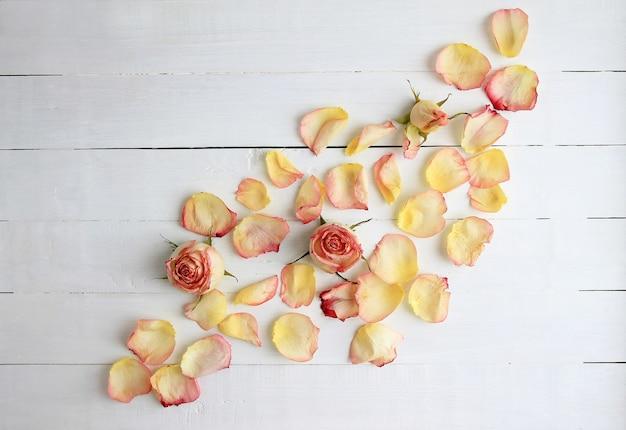 Rosas rosadas, pétalos de rosa sobre fondo de madera