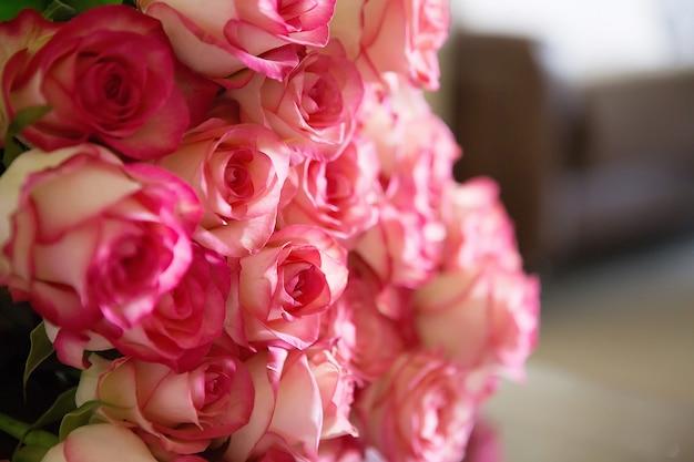 Rosas rosadas para san valentín o el día de la madre. luz natural, enfoque selectivo.