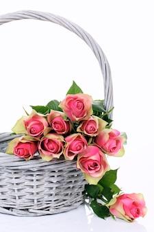 Rosas rosas en canasta sobre fondo blanco.