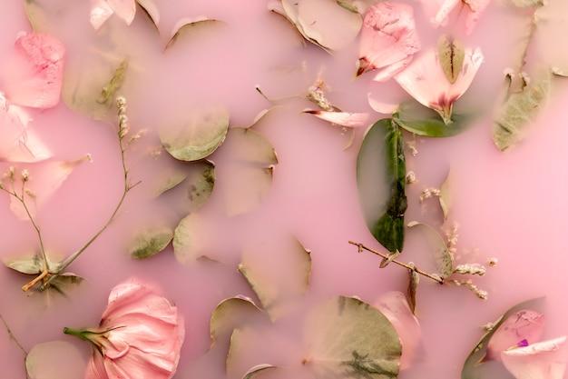 Rosas rosas y hojas en agua de color rosa