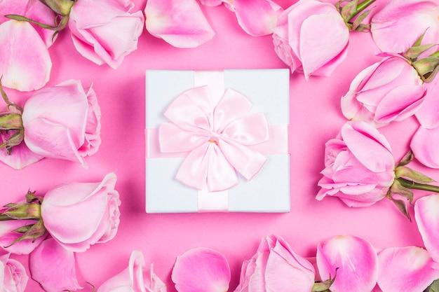Rosas rosas sobre fondo rosa