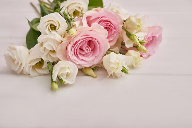 Rosas sobre fondo blanco