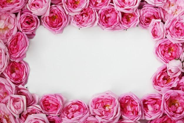 Rosas de té rosa forradas con un marco, espacio de copia