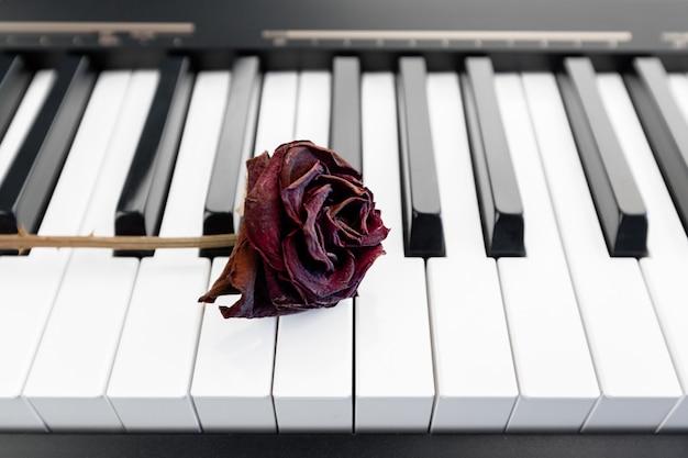 Rose en un piano