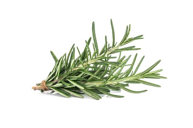 Rosemary aislado en el fondo blanco