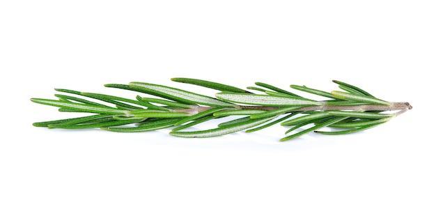 Rosemary aislado en un fondo blanco