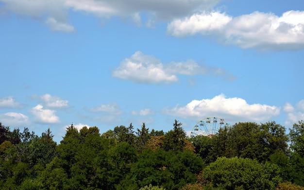 Rueda de la fortuna en el parque con cielo nublado