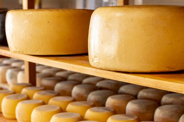 Ruedas de queso madurado en primer plano